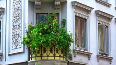 Sa dolaskom proleća na vreme započnite sa uređenjem svog balkona